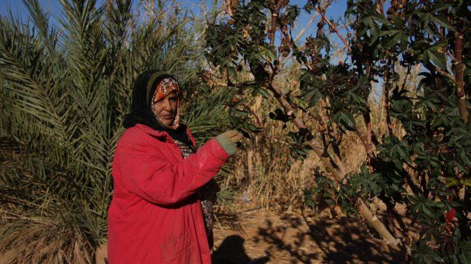Una de las mujeres del equipo de trabajo del huerto