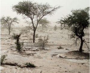 fondo-fiduiciario africa