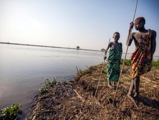 fao-consejo-de-seguridad-hambre-cero-alimentacion-hambre-conflicto