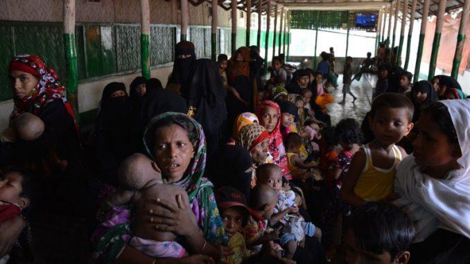 refugiados rohingya