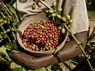 especulacion-productos-oxfam-comercio-justo