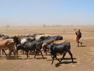 sequía-cambio-de gestión