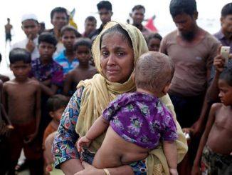 rohingya-identificacion