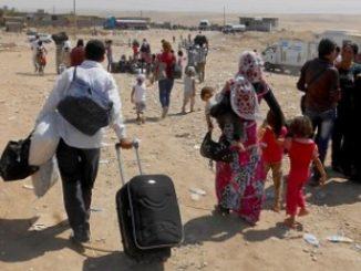 refugiados-cear-informe-2017