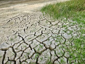 arido-tierras-planeta-sostenible