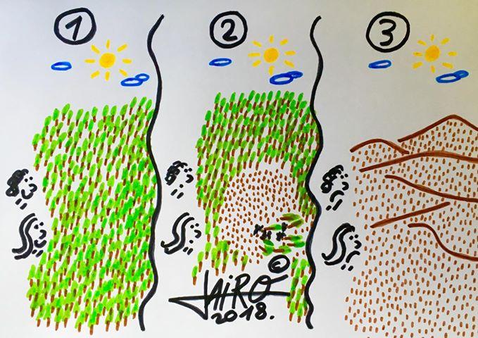 jairo-jimenez-deforestación-colaborador