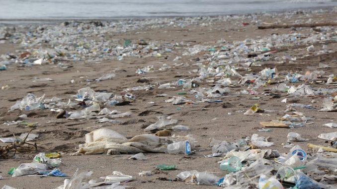 plataforma-contra-plasticos