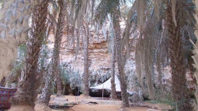 Sahara mauritano Oasis Terjit