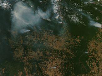 Amazonas deforestación e incendios