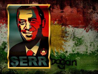Siria ofensiva Turquía