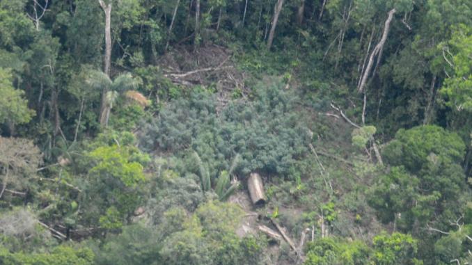 indígenas no contactados perú