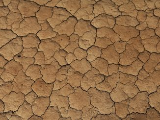 suelo-áfrica-progra-afrosoils