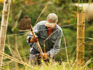 agricultores-paz-conflictos