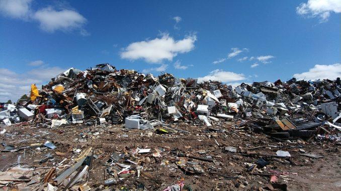 Disponer de un medio ambiente saludable pasa por ser un derecho humano