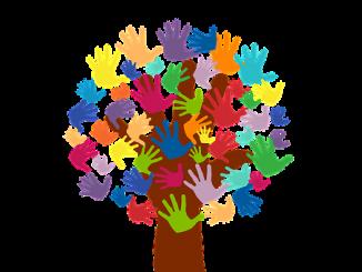 voluntariado-brasil