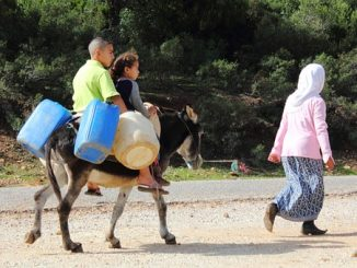refugiados-crisis