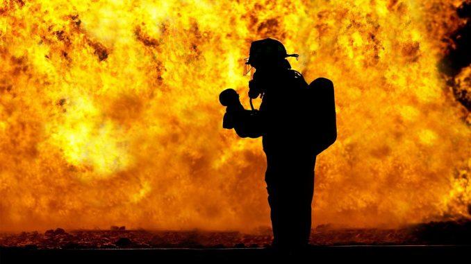Incendios forestales en todo el mundo