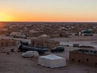 refugiados saharauis frente polisario