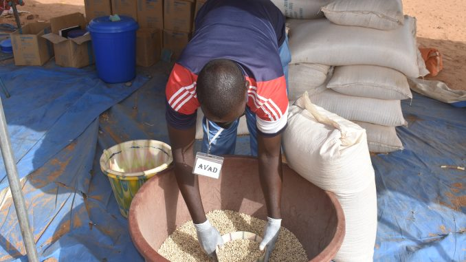 Inseguridad Alimentaria Burkina Faso