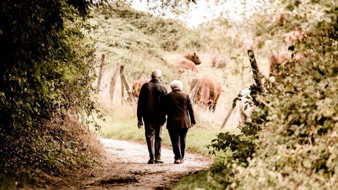 Voluntariado pensionistas