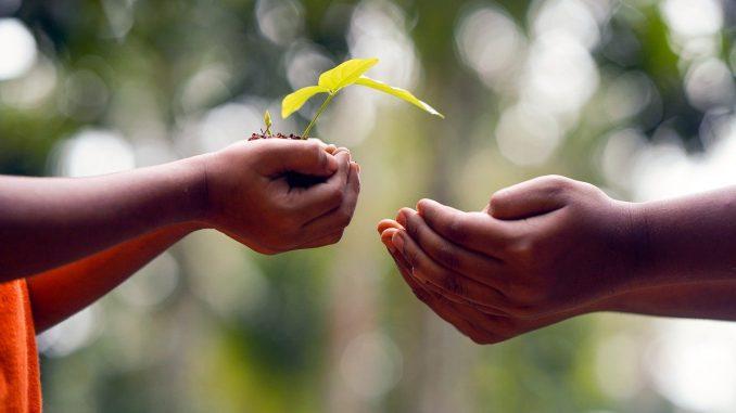 Coslada Subvenciones cooperación internacional