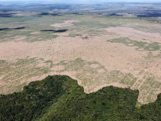 Deforestación Brasil Amazonía