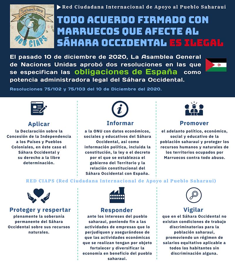Resolución Sáhara Occidental