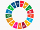 ODS en España