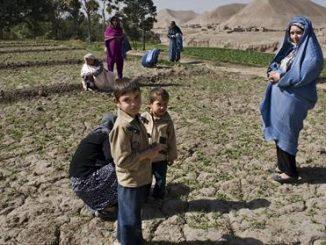 España Afganistan asistencia humanitaria