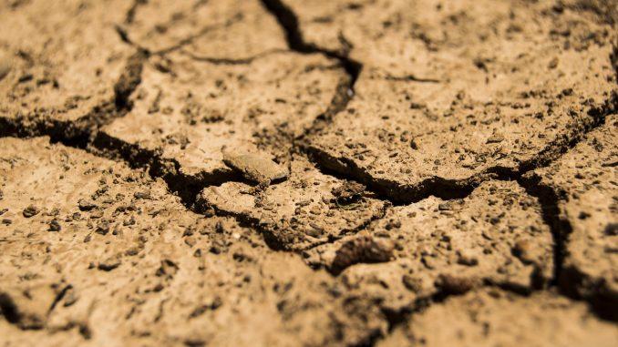 crisis climática y el Covid-19
