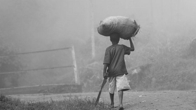 trabajo infantil agricultura Africa
